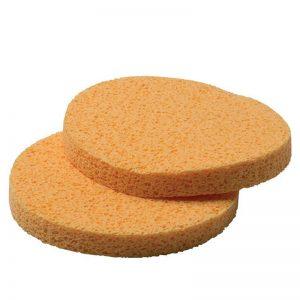 Circular Sponges