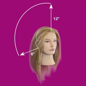 Hair Measurements Pivot Point Mannequins